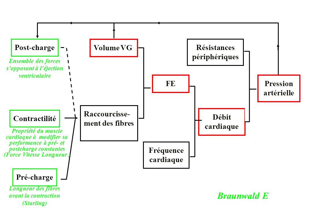 Post-charge Contractilité Pré-charge Volume VG Raccourcisse- ment des fibres FE Fréquence cardiaque Résistances périphériques Débit cardiaque Pression