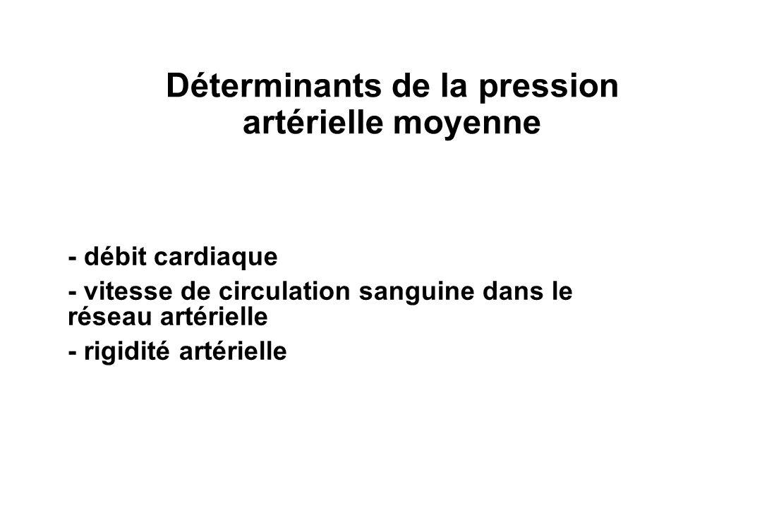 Déterminants de la pression artérielle moyenne - débit cardiaque - vitesse de circulation sanguine dans le réseau artérielle - rigidité artérielle