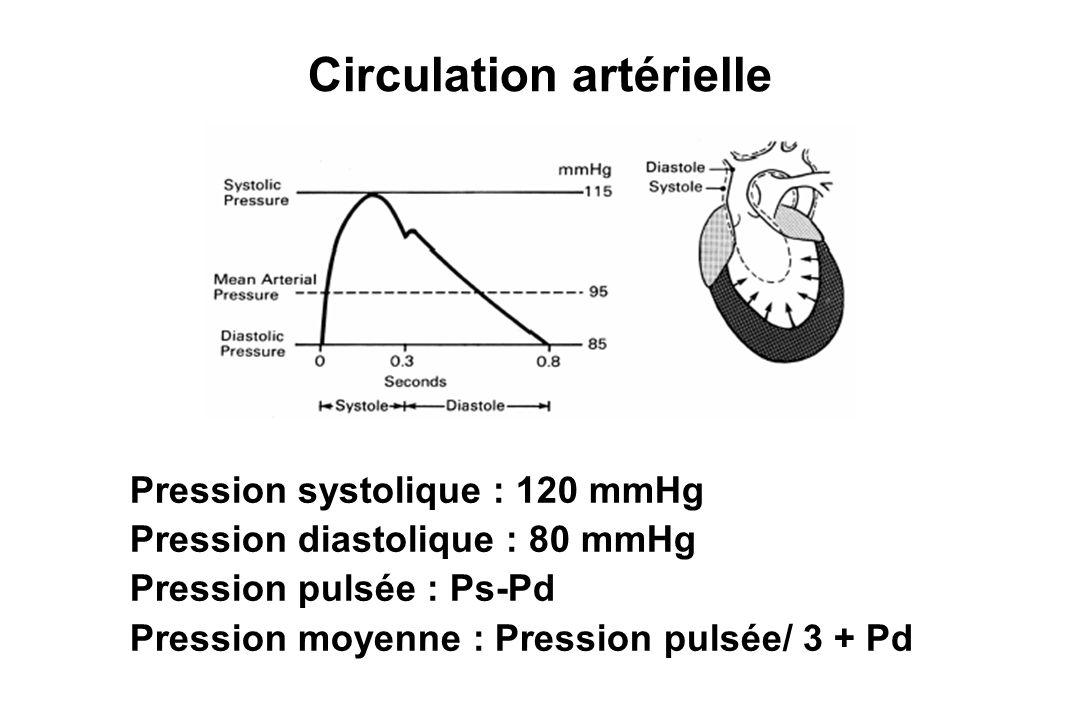 Circulation artérielle Pression systolique : 120 mmHg Pression diastolique : 80 mmHg Pression pulsée : Ps-Pd Pression moyenne : Pression pulsée/ 3 + P
