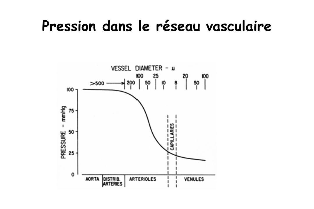 Pression dans le réseau vasculaire