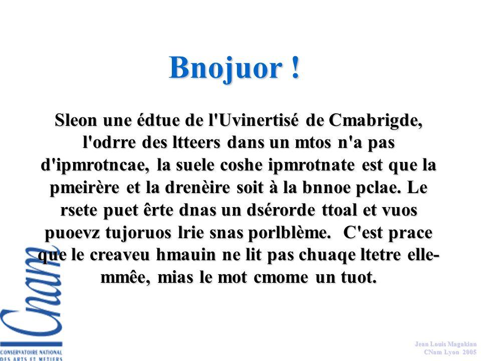 Jean Louis Magakian CNam Lyon 2005 Les symboles sont les codes, modes de représentations (sténographiques) qui sont connus et partagés dans l entreprise et qui agissent comme autant d éléments signifiants.