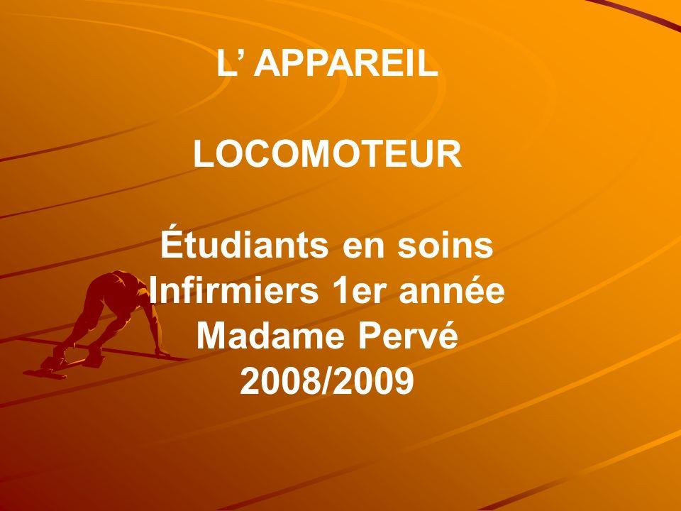 L APPAREIL LOCOMOTEUR Étudiants en soins Infirmiers 1er année Madame Pervé 2008/2009