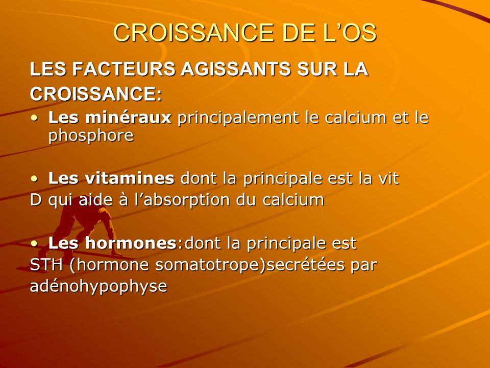 CROISSANCE DE LOS LES FACTEURS AGISSANTS SUR LA CROISSANCE: Les minéraux principalement le calcium et le phosphoreLes minéraux principalement le calci