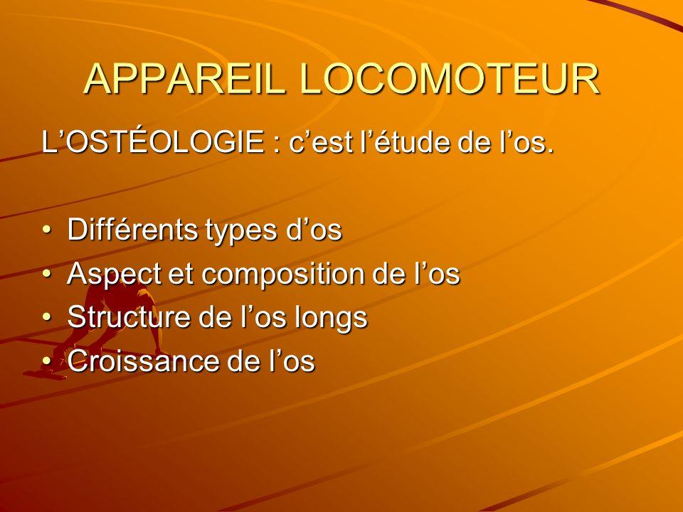 APPAREIL LOCOMOTEUR LOSTÉOLOGIE : cest létude de los. Différents types dosDifférents types dos Aspect et composition de losAspect et composition de lo