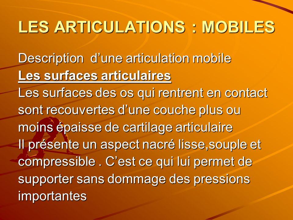 LES ARTICULATIONS : MOBILES Description dune articulation mobile Les surfaces articulaires Les surfaces des os qui rentrent en contact sont recouverte