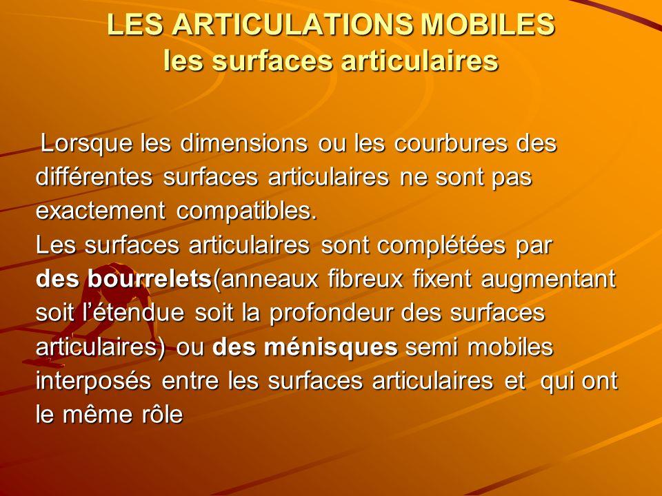 LES ARTICULATIONS MOBILES les surfaces articulaires Lorsque les dimensions ou les courbures des Lorsque les dimensions ou les courbures des différente