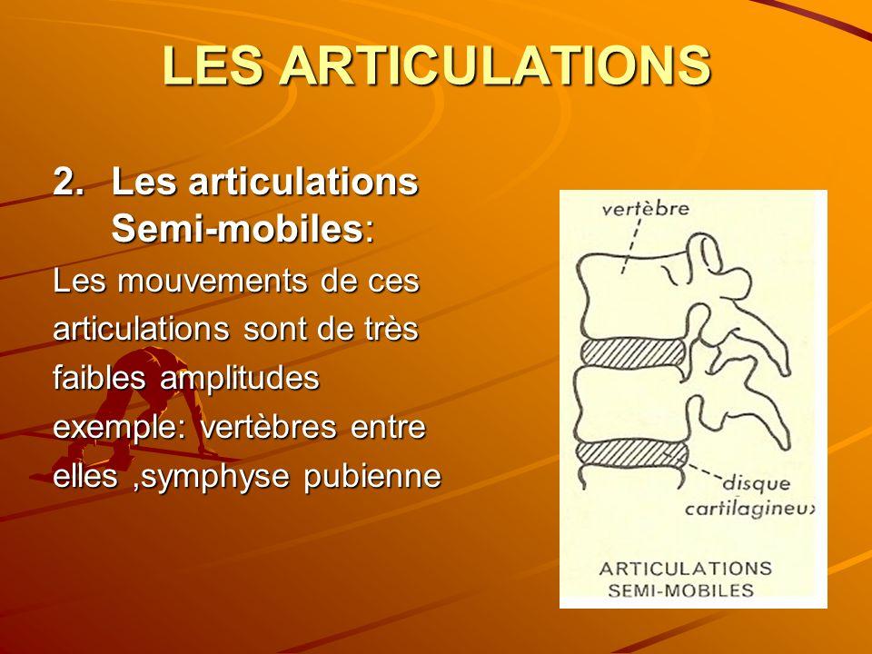 LES ARTICULATIONS 2.Les articulations Semi-mobiles: Les mouvements de ces articulations sont de très faibles amplitudes exemple: vertèbres entre elles