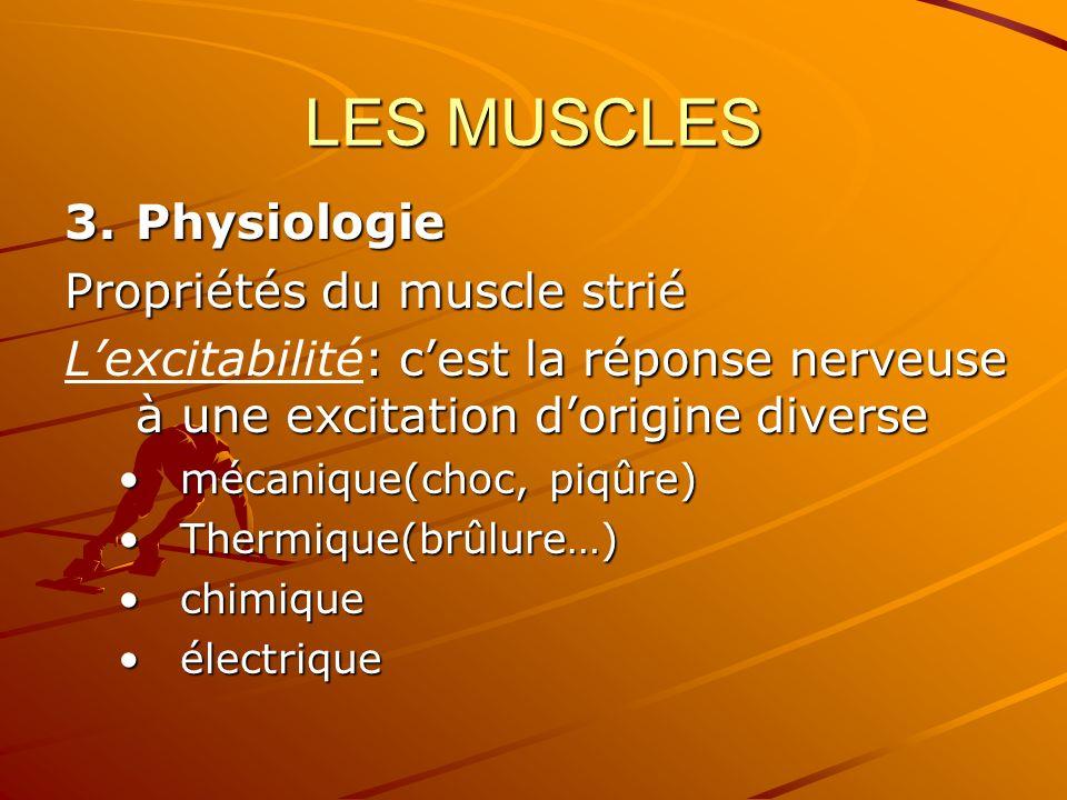 LES MUSCLES 3.Physiologie Propriétés du muscle strié : cest la réponse nerveuse à une excitation dorigine diverse Lexcitabilité: cest la réponse nerve