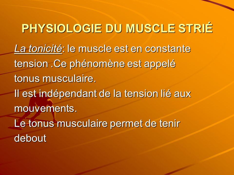 PHYSIOLOGIE DU MUSCLE STRIÉ La tonicité: le muscle est en constante tension.Ce phénomène est appelé tonus musculaire. Il est indépendant de la tension