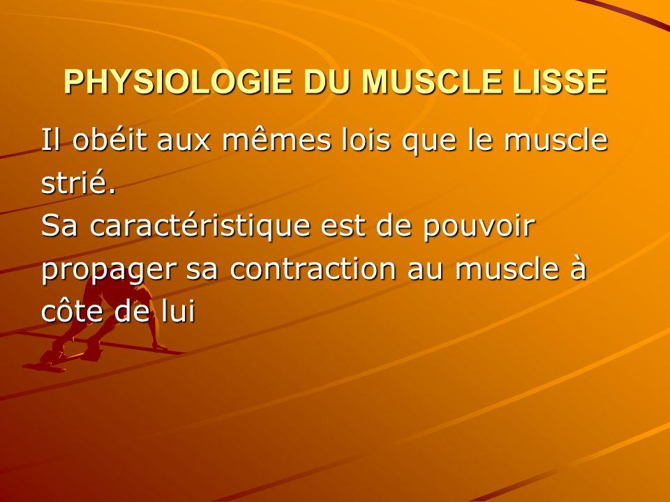 PHYSIOLOGIE DU MUSCLE LISSE Il obéit aux mêmes lois que le muscle strié. Sa caractéristique est de pouvoir propager sa contraction au muscle à côte de