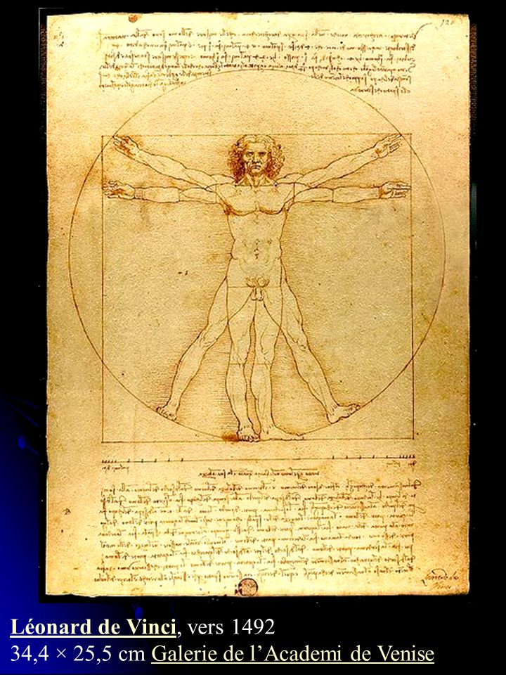 Cette page de Vinci contient un dessin bien connu, mais aussi un texte dont il est l illustration, qui détaille les proportions du corps humain telles que Vinci a pu les observer : ce n est pas un homme idéal, mais le modèle géométrique d un homme normal.