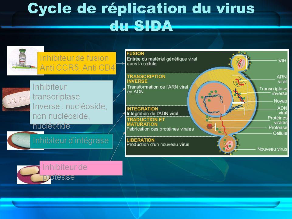 Cycle de réplication du virus du SIDA Inhibiteur de fusion Anti CCR5, Anti CD4 Inhibiteur transcriptase Inverse : nucléoside, non nucléoside, nucléoti
