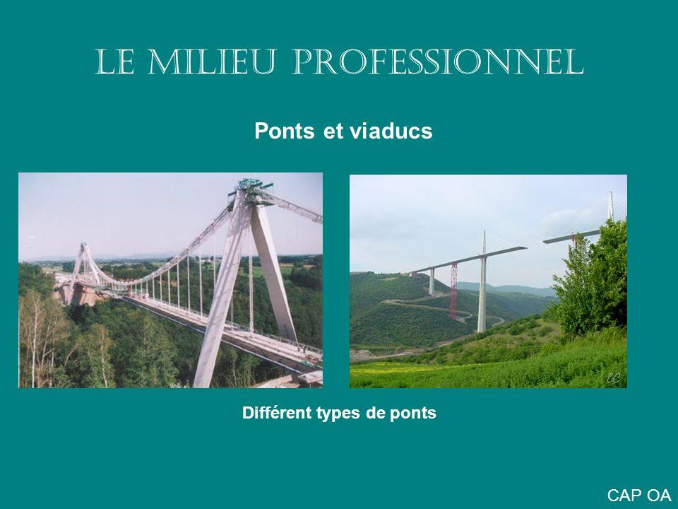 LE MILIEU PROFESSIONNEL Ponts et viaducs Différent types de ponts CAP OA
