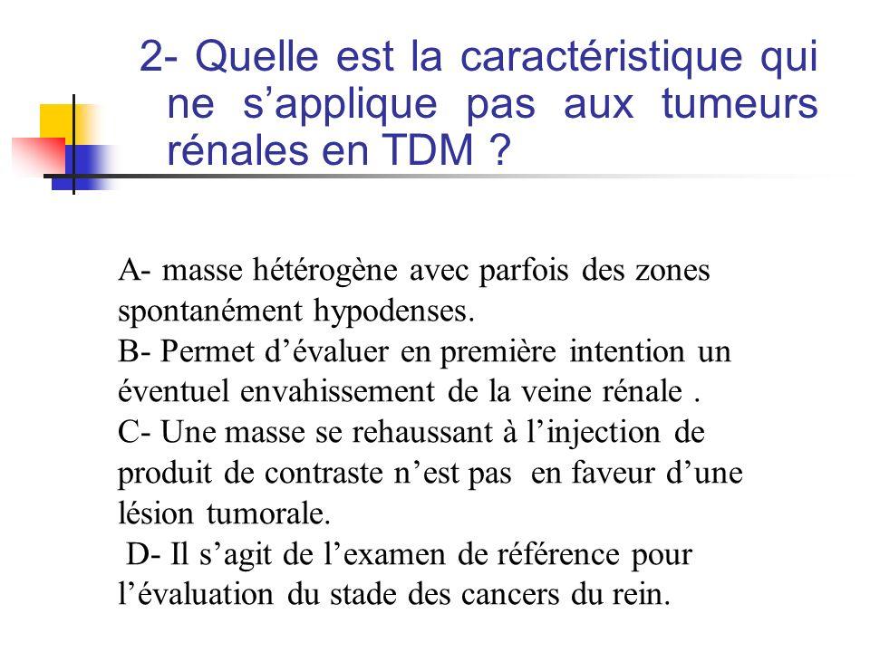 2- Quelle est la caractéristique qui ne sapplique pas aux tumeurs rénales en TDM ? A- masse hétérogène avec parfois des zones spontanément hypodenses.