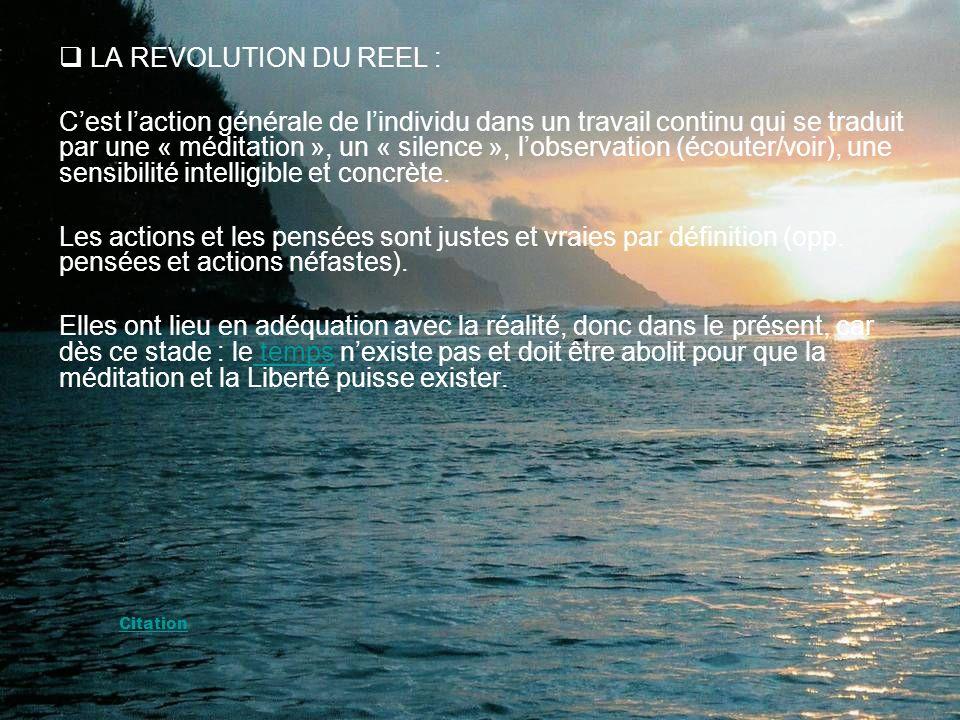 LA REVOLUTION DU REEL : Cest laction générale de lindividu dans un travail continu qui se traduit par une « méditation », un « silence », lobservation (écouter/voir), une sensibilité intelligible et concrète.
