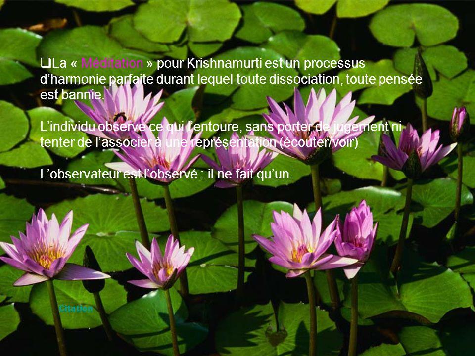 La « Méditation » pour Krishnamurti est un processus dharmonie parfaite durant lequel toute dissociation, toute pensée est bannie.