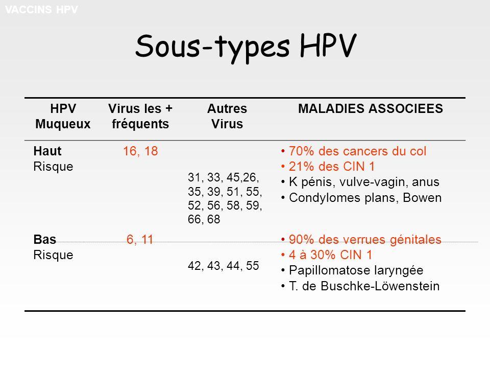 Sous-types HPV HPV Muqueux Virus les + fréquents Autres Virus MALADIES ASSOCIEES Haut Risque 16, 18 31, 33, 45,26, 35, 39, 51, 55, 52, 56, 58, 59, 66,
