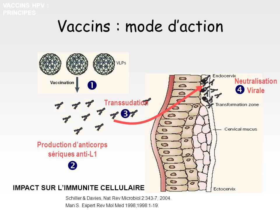 Vaccins : mode daction Production danticorps sériques anti-L1 Transsudation Neutralisation Virale IMPACT SUR LIMMUNITE CELLULAIRE Schiller & Davies, N