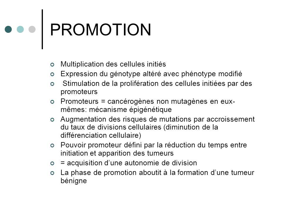 PROMOTION Multiplication des cellules initiés Expression du génotype altéré avec phénotype modifié Stimulation de la prolifération des cellules initié