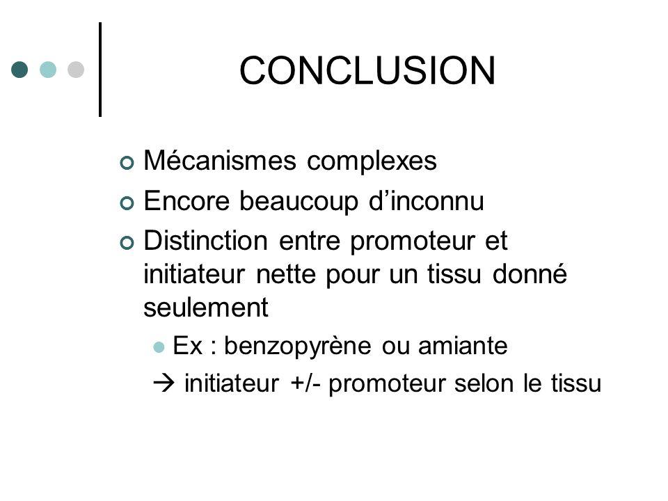 CONCLUSION Mécanismes complexes Encore beaucoup dinconnu Distinction entre promoteur et initiateur nette pour un tissu donné seulement Ex : benzopyrèn