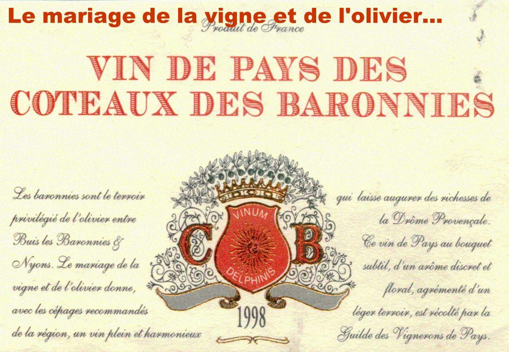 Séminaire INRA-SADAPT, 07 octobre 200916 Le mariage de la vigne et de l'olivier…