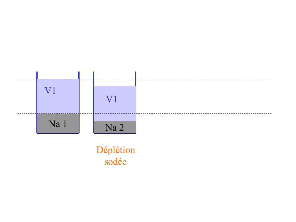Na 1 Na 2 V1 Déplétion sodée