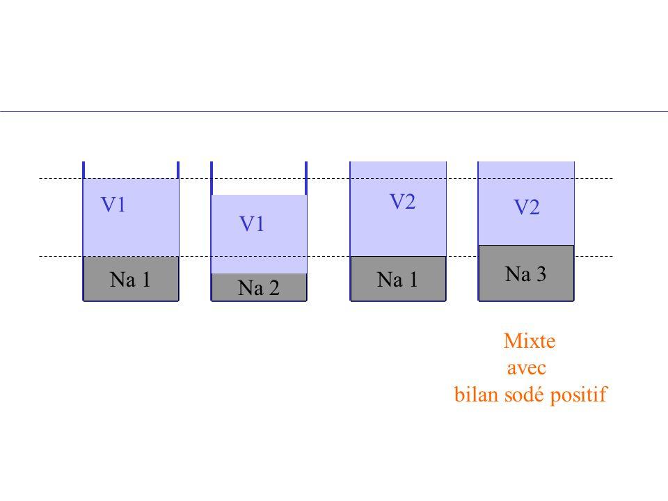 Na 1 Na 2 Na 1 V1 V2 V1 Na 3 V2 Mixte avec bilan sodé positif