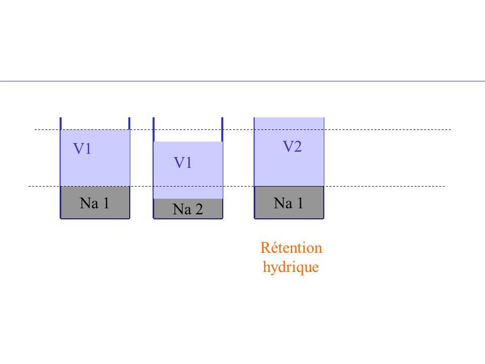 Na 1 Na 2 Na 1 V1 V2 V1 Rétention hydrique