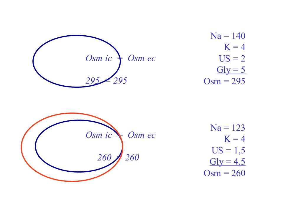 Osm ic = Osm ec 260 = 260 Na = 123 K = 4 US = 1,5 Gly = 4,5 Osm = 260 Osm ic = Osm ec 295 = 295 Na = 140 K = 4 US = 2 Gly = 5 Osm = 295