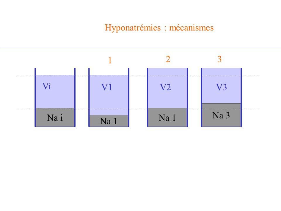 Na i Na 1 Vi V1 Na 3 V3 Hyponatrémies : mécanismes 1 23 V1V2
