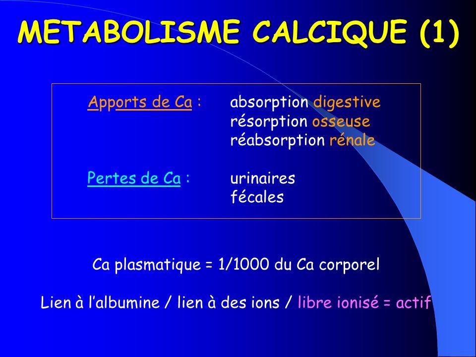 METABOLISME CALCIQUE (1) Apports de Ca :absorption digestive résorption osseuse réabsorption rénale Pertes de Ca :urinaires fécales Ca plasmatique = 1