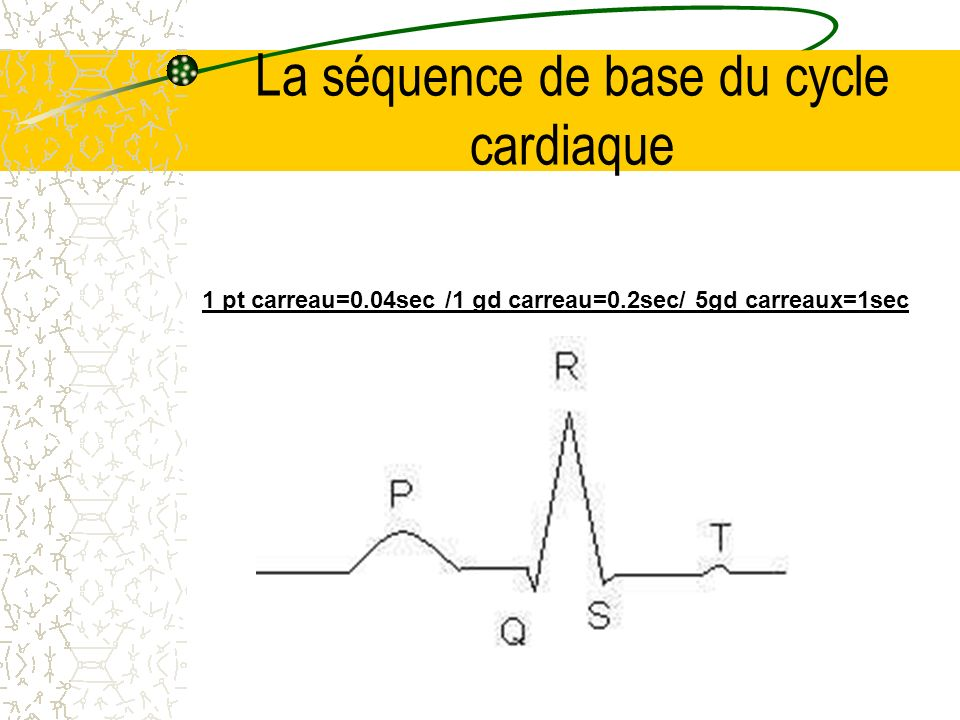 La séquence de base du cycle cardiaque 1 pt carreau=0.04sec /1 gd carreau=0.2sec/ 5gd carreaux=1sec
