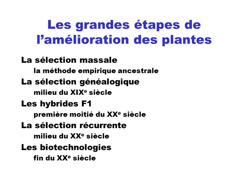 Les grandes étapes de lamélioration des plantes La sélection massale la méthode empirique ancestrale La sélection généalogique milieu du XIX e siècle