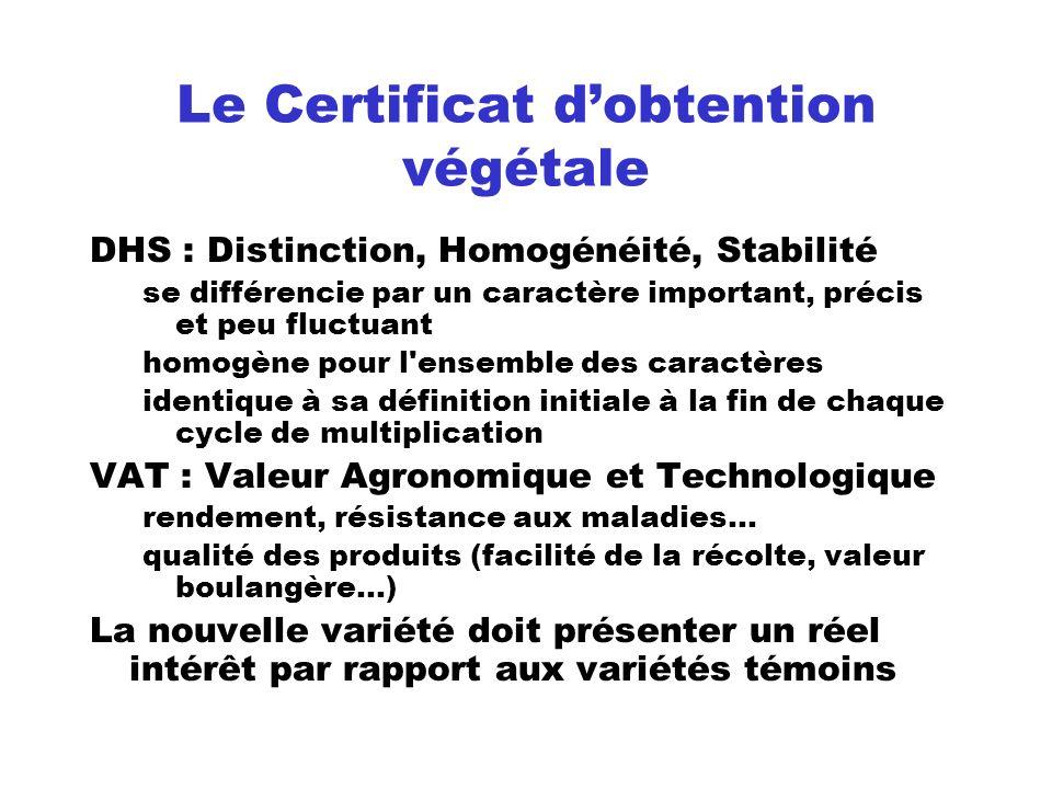 Le Certificat dobtention végétale DHS : Distinction, Homogénéité, Stabilité se différencie par un caractère important, précis et peu fluctuant homogèn