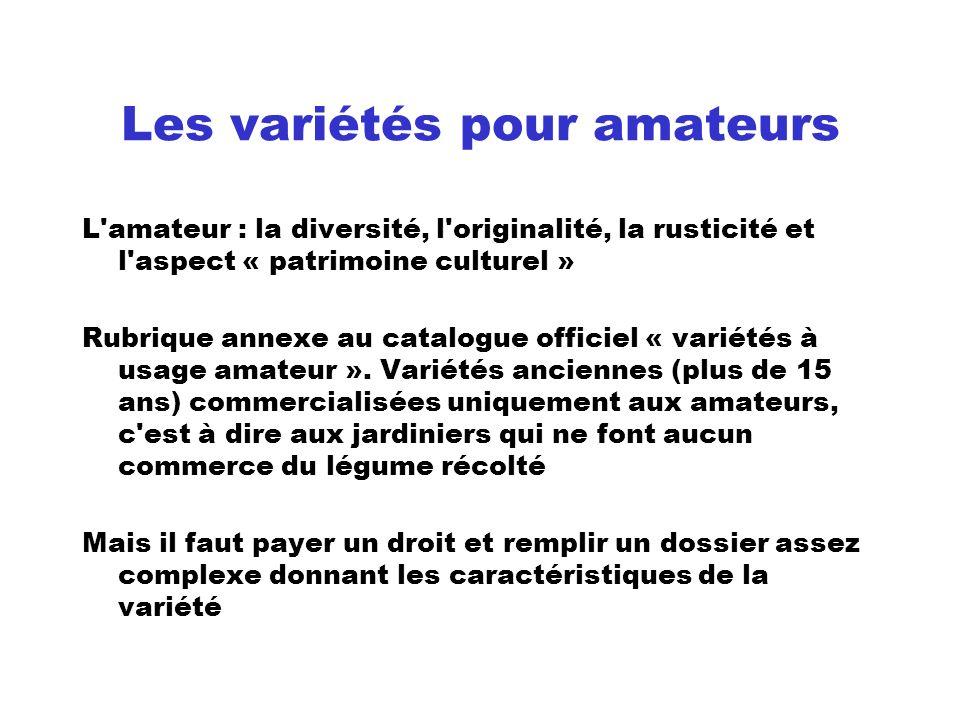 Les variétés pour amateurs L'amateur : la diversité, l'originalité, la rusticité et l'aspect « patrimoine culturel » Rubrique annexe au catalogue offi