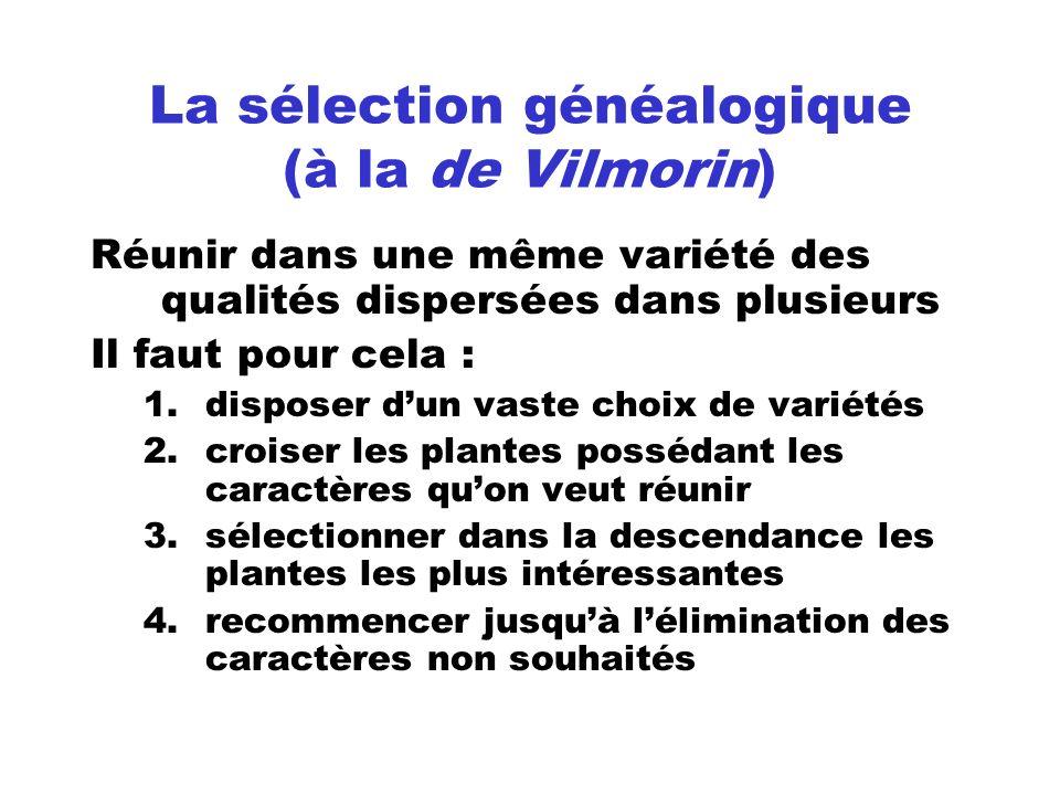 La sélection généalogique (à la de Vilmorin) Réunir dans une même variété des qualités dispersées dans plusieurs Il faut pour cela : 1.disposer dun va