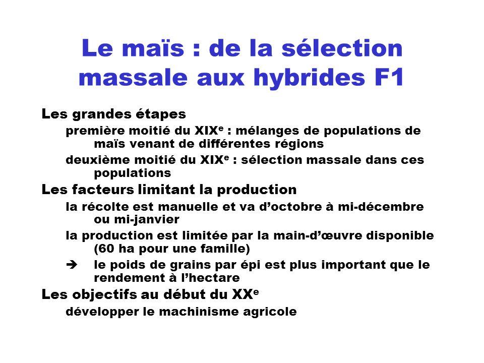 Le maïs : de la sélection massale aux hybrides F1 Les grandes étapes première moitié du XIX e : mélanges de populations de maïs venant de différentes