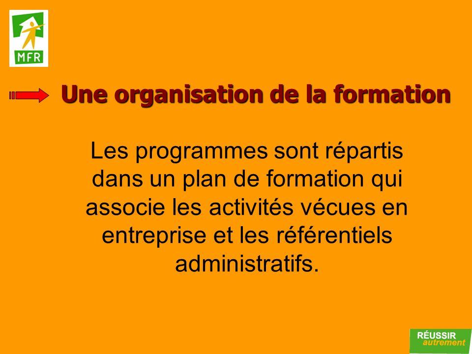 Les programmes sont répartis dans un plan de formation qui associe les activités vécues en entreprise et les référentiels administratifs. Une organisa