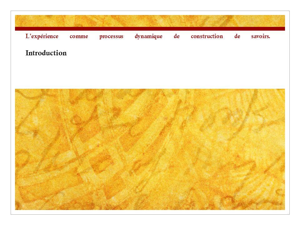 L expérience comme processus dynamique de construction de savoirs. Introduction