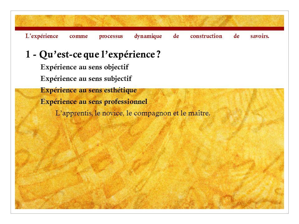 L expérience comme processus dynamique de construction de savoirs.