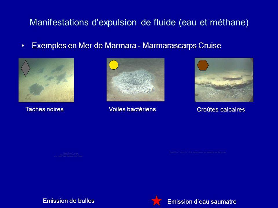 Manifestations dexpulsion de fluide (eau et méthane) Exemples en Mer de Marmara - Marmarascarps Cruise Taches noiresVoiles bactériens Croûtes calcaires Emission deau saumatre Emission de bulles