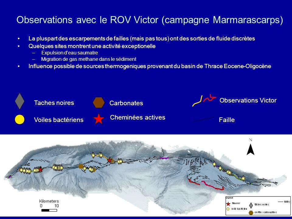 Manifestations dexpulsion de fluide (eau et méthane) Exemples en Mer de Marmara - Marmarascarps Cruise Taches noiresVoiles bactériens Croûtes calcaire