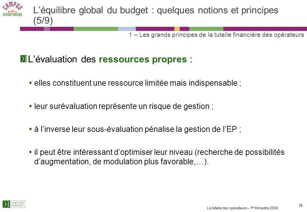La tutelle des opérateurs – 1 er trimestre 2009 17 Léquilibre global du budget : quelques notions et principes (4/9) Pour la variation du fonds de rou