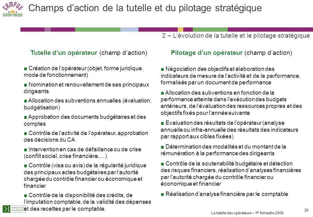 La tutelle des opérateurs – 1 er trimestre 2009 34 Le pilotage stratégique consiste à déterminer et à suivre les objectifs de la politique publique mi