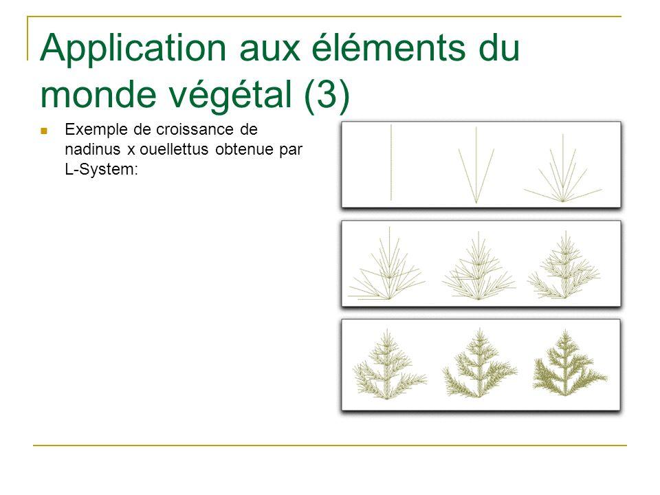Application aux éléments du monde végétal (3) Exemple de croissance de nadinus x ouellettus obtenue par L-System: