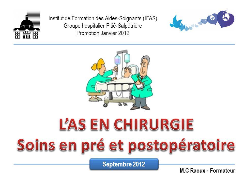 Institut de Formation des Aides-Soignants (IFAS) Groupe hospitalier Pitié-Salpêtrière Promotion Janvier 2012 M.C Raoux - Formateur Septembre 2012