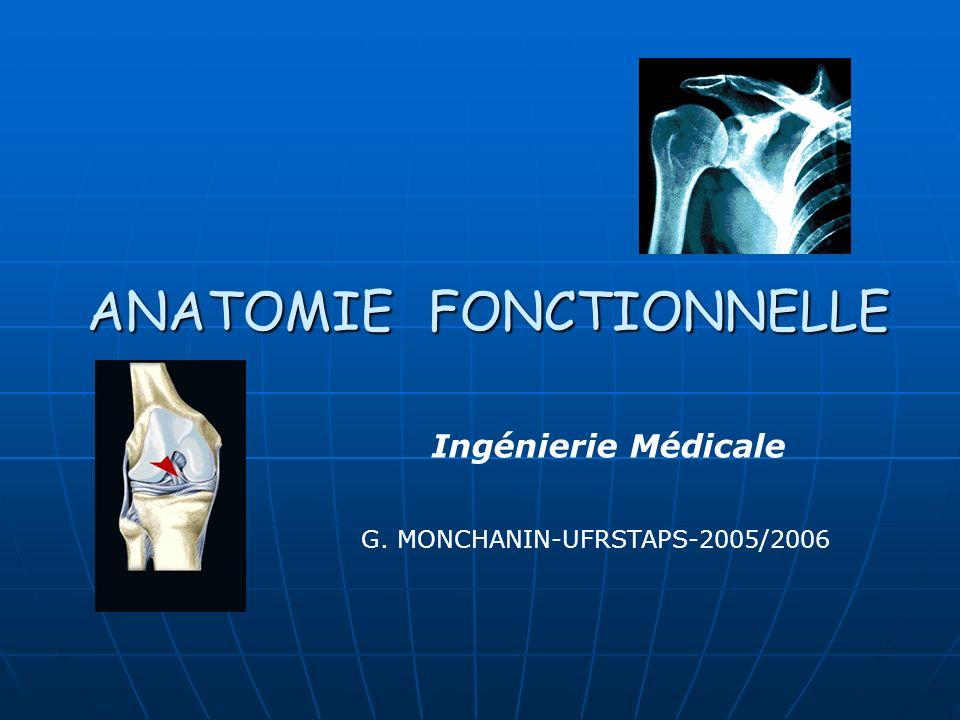 ANATOMIE FONCTIONNELLE G. MONCHANIN-UFRSTAPS-2005/2006 Ingénierie Médicale