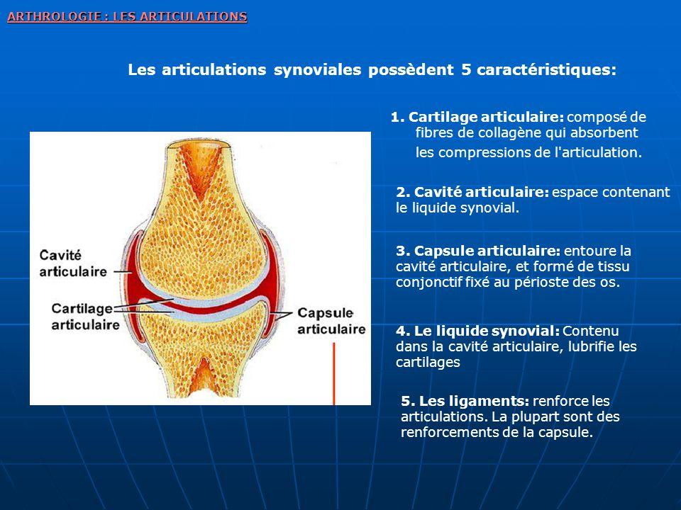 ARTHROLOGIE : LES ARTICULATIONS Les articulations synoviales possèdent 5 caractéristiques: 1. Cartilage articulaire: composé de fibres de collagène qu