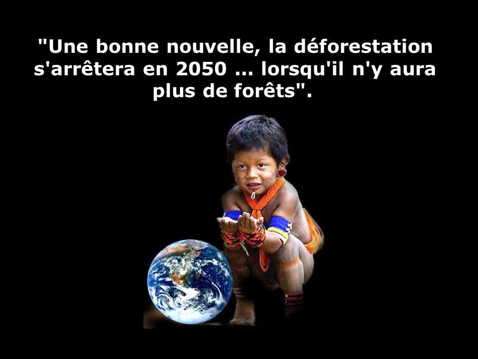 19 Et raser les forêts tropicales restantes, pour y faire pousser des oléagineux qui alimenteraient nos voitures, nest pas une solution viable! Cest p