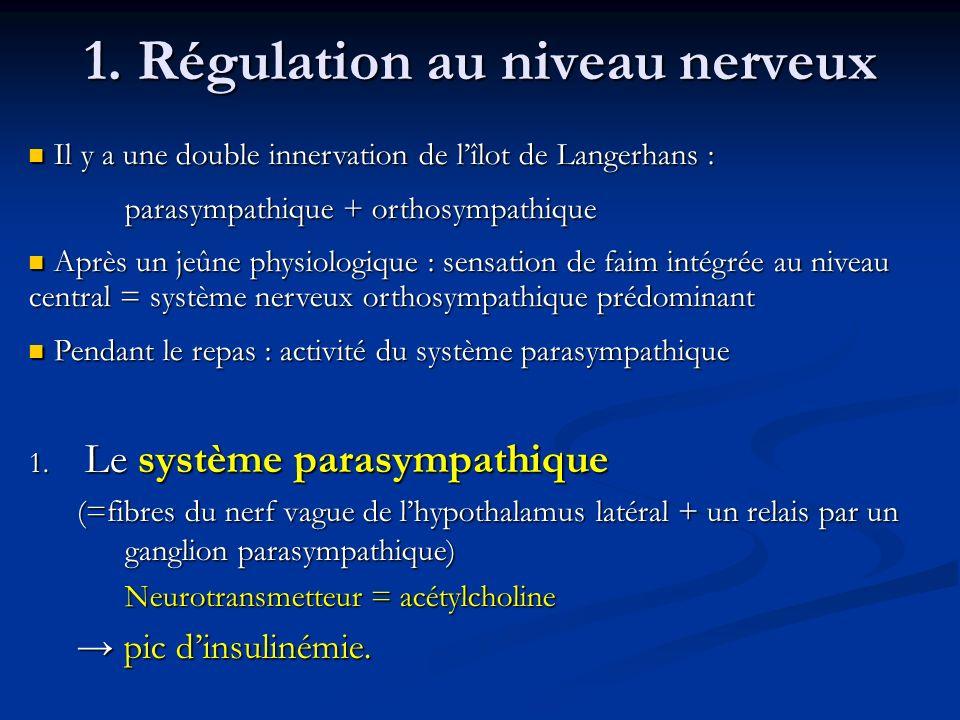 1. Régulation au niveau nerveux 1. Le système parasympathique (=fibres du nerf vague de lhypothalamus latéral + un relais par un ganglion parasympathi